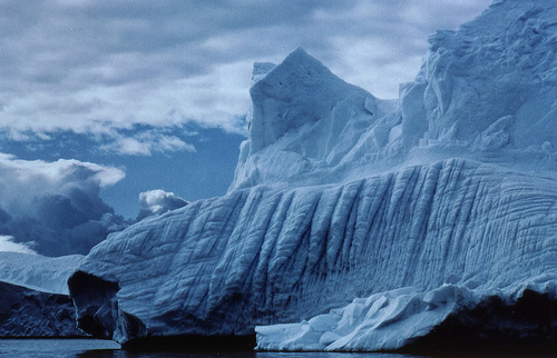 Wilkins-ice-shelf1
